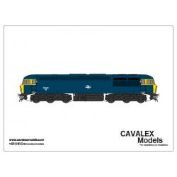 56008-BR Blue–(CM-56008-BRB)